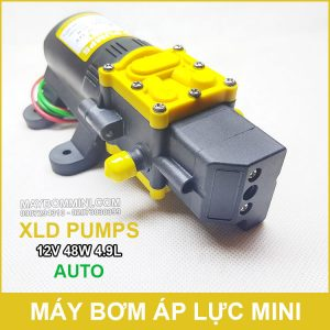 May Bom Mini Tu Dong 12v 48w Gia Re