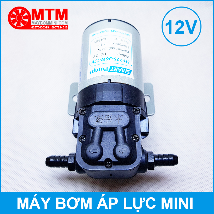 Dau Bom May Ap Luc Mini 12v 24v