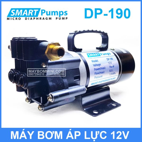 May Bom Smartpumps DP190