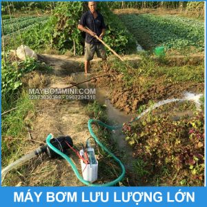 Bom Nuoc Dung Bich Ac Quy 12V Xe May Oto
