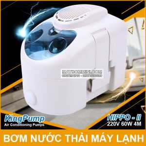 May Bom Nuoc Thai May Lanh 220V Hippo 2 Kingpumps