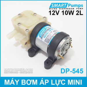 May Bom Ap Luc Mini 12V 10W 2L Smartpumps DP 545