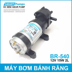 May Bom Bang Banh Rang 12V Smartpumps